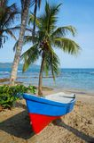 Boat on a tropical beach with coconut tree Stock Images