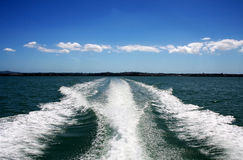 Boat Wake on Green Ocean Stock Images