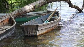 The boat is on the water near the shore, tied to a tree and rotates under the influence of wind. stock footage