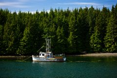 Boat in water surrounded by forest. Boat floating on water surrounded by trees Royalty Free Stock Photo