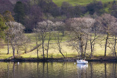 Boat on Windermere royalty free stock photo