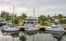 Boat World. Yacht club on the waterway. Sailboat palm trees fishing boating landscape calm tall pool places expensive money cost luxuries Stock Photos