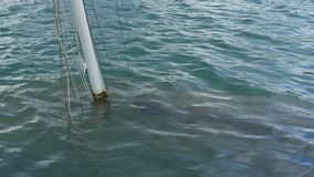Boat Wreck under Water. Boat and mast of a wreck underwater near the shore stock video footage