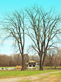Boathouse. Framed by two tall trees Royalty Free Stock Photography