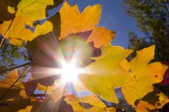 Boati φθινοπώρου sun_2 bakgraund teaf Στοκ φωτογραφίες με δικαίωμα ελεύθερης χρήσης