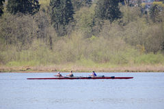 Women Sculling in Burnaby Lake. A group of three women practice the sport of sculling in their four people shell. This is taken in Burnaby Lake, BC, Canada stock image