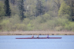 Sculling on Burnaby Lake. A group of women practice the sport of competitive sculling in a four man shell. This is taken in Burnaby Lake, BC, Canada royalty free stock image