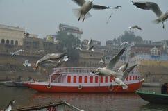 Boating. On internal Ganga, in city of silence and death, Varanasi (Banaras), India Stock Photo