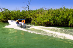 Boating in mangroves in Mayan Riviera Mexico Royalty Free Stock Photos