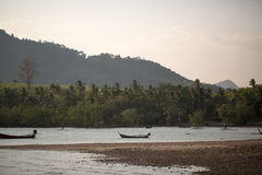 Boating on the river in jungle Stock Photo