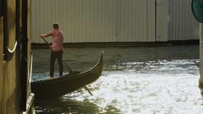 Boatman standing on gondola and rowing down canal with sunshine reflected on it. Stock footage stock video