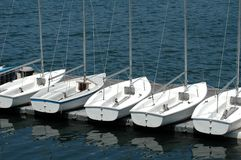 Boats. White boats on docked on the water Royalty Free Stock Photography