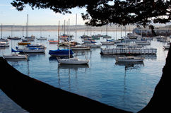 Boats. In the Monterey Bay, California stock image