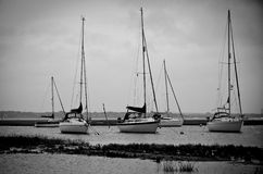 Boats. Anchored in a bay Royalty Free Stock Image