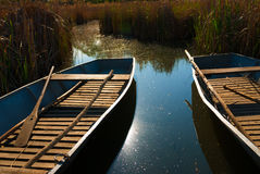 Boats are aligned on the shores of a lake Royalty Free Stock Images