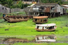 Boats in Amazonia. Boats in the dry bed of one of the many lakes on the banks of the Amazon River Stock Photos