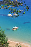 Boats anchored on clear waters. Cruise boats anchored on a beautiful tropical beach at Fernando de Noronha Royalty Free Stock Photography