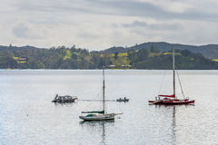 Boats in the Bay of Islands Stock Photography