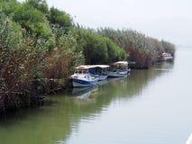 Boats on bird paradise Stock Images