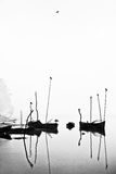 Boats -black and white. Boats during a foggy day in the river Royalty Free Stock Images