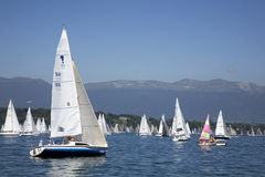 Boats in the Bol D'Or on Lake Geneva royalty free stock images