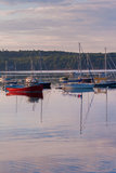 Boats in Boothbay Harbor - vertical Royalty Free Stock Photo