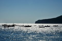 Boats on Brilliant Sea Stock Photography