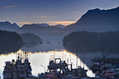 Boats in calm harbor marina at sunrise Tofino British Columbia Canada. Sunrise over the mountains with boats in the marina. Tofino British Columbia Canada Stock Images