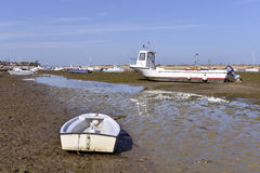Boats at  Cap-Ferret in France. Boats at low tide at Cap-Ferret, ostreicole commune located on shore of Arcachon Bay, in the Gironde department in southwestern Royalty Free Stock Photo
