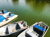 Boats and catamarans on a pond lake in a river canal with green flowered water are moored on the shore stock photos