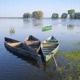 Boats chained up. Chained boat standing on the bank of the river Royalty Free Stock Photography
