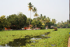 Boats cruising on a canal of the backwaters near Alleppey Royalty Free Stock Images