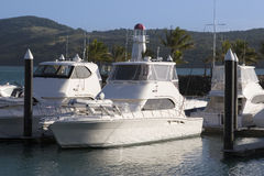 Boats docked in Whitsunday Island Marina Stock Images