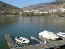 Douro valley wine Portugal Royalty Free Stock Photos