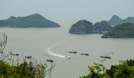 Boats drving on sea in Cat Ba island Royalty Free Stock Image