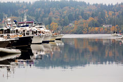 Boats in Fall Colors. Boat in port with fall colors in background on the Washington coast Stock Photography