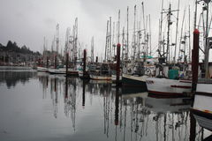 Boats. Fishing boats docked in the bay in Newport, OR Stock Photo