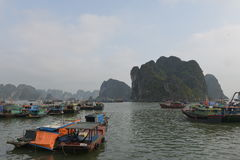Boats in the fishing port in Ha Long Bay, Vietnam Stock Images