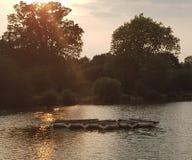 Boats float at sun set stock photography