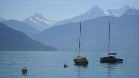 Boats floating on lake Thun stock video