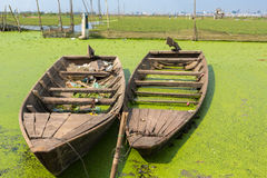 Boats floating near rice fields with Phnom Penh in the backgroun Stock Images