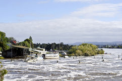Boats in floodwater, Launceston, Tasmania Royalty Free Stock Photo