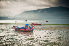 Boats in Galicia Royalty Free Stock Photo