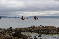 Boats at Galway Bay, Ireland. Parade of traditional fishing boats called `Galway Hooker royalty free stock photo