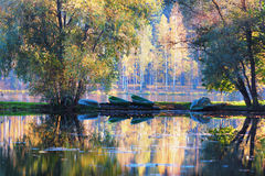 Boats on the green grass on the lake in the autumn forest Stock Images