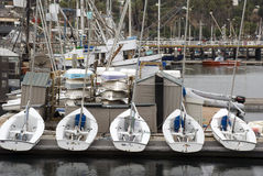 Boats in harbor Royalty Free Stock Images