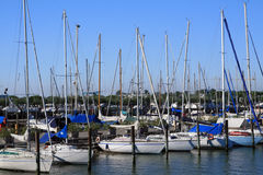 Boats at Harbor Royalty Free Stock Image