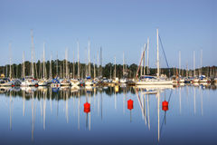 Boats at the harbour. Boats and yachts moored at the Nynashamn's harbor in Sweden Stock Images