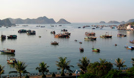 Boats in a harbour in Catba island, VIetnam Stock Images