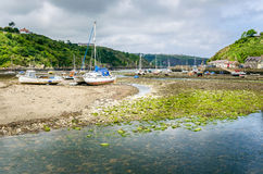 Boats in Harbour at Low Tide on a Cloudy Day Stock Image